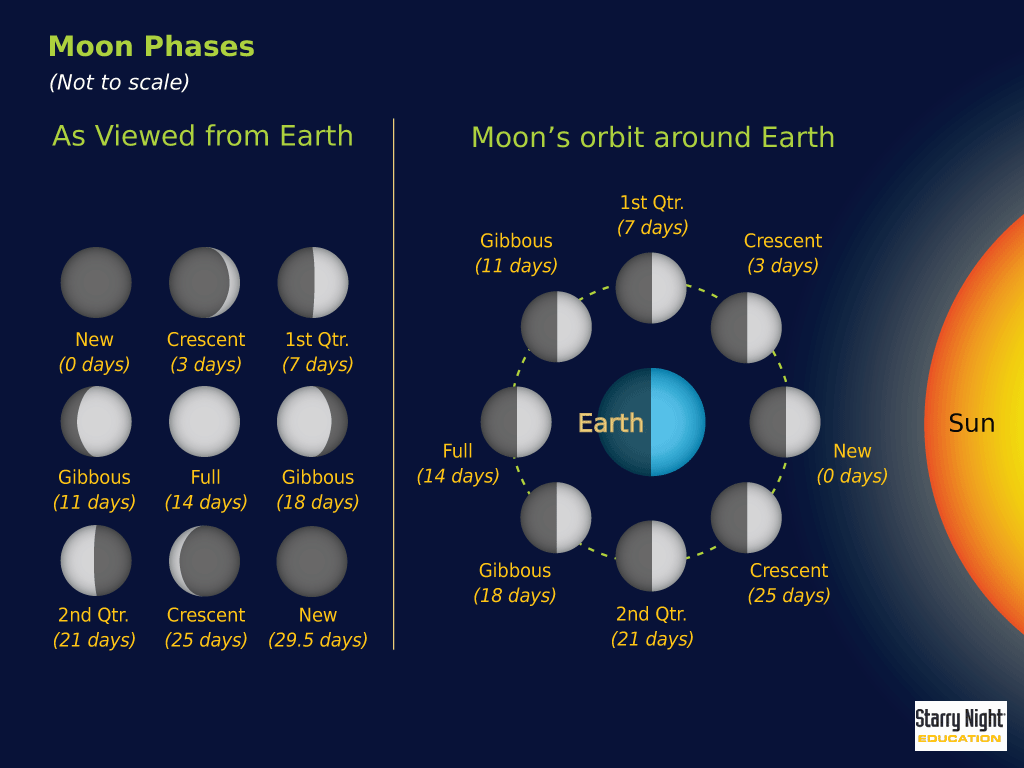 Starry Night Education Astronomy Software Free Resources Diagram Of Moon Phases The